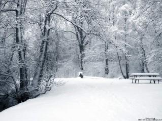 겨울풍경1.jpg