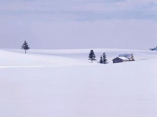 겨울풍경3.jpg